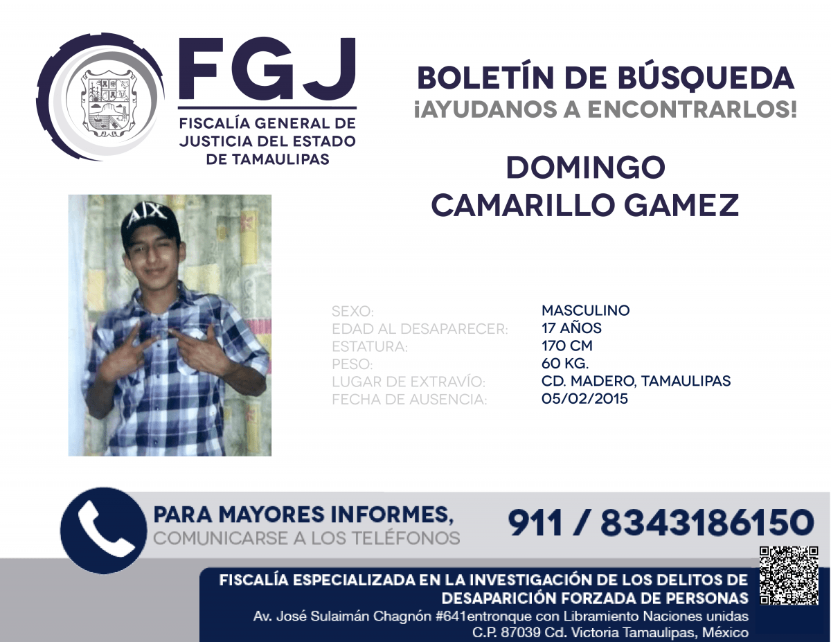 DOMINGO CAMARILLO GAMEZ